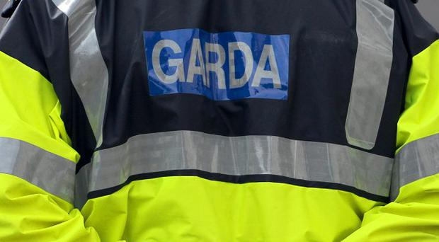A Garda officer suffered a serious head injury after the patrol car she was in was rammed by suspected burglars