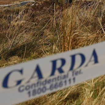 Gardai are investigating the death of a motorist in a car crash outside Clane in Co Kildare