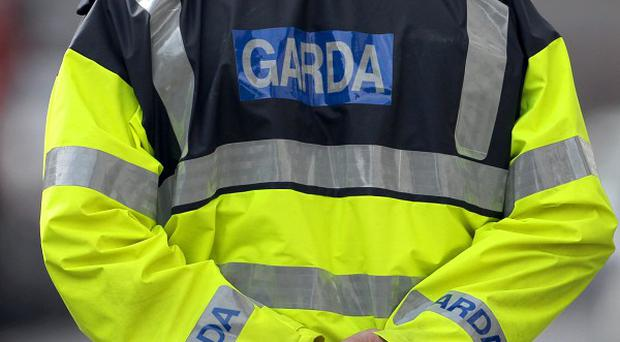 A family escaped unharmed after several shots struck the front door of their home in north Dublin
