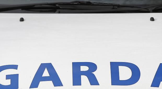 A couple and their four children escaped unharmed after gunshots were fired at their home