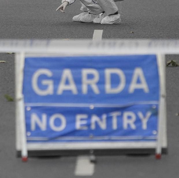 Two girls were allegedly sexually attacked when they were lured away from a children's birthday party in Athlone