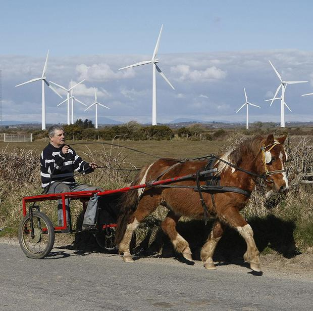 "Fears about a proposed windfarm venture have been ""needlessly stoked"", according to the government."