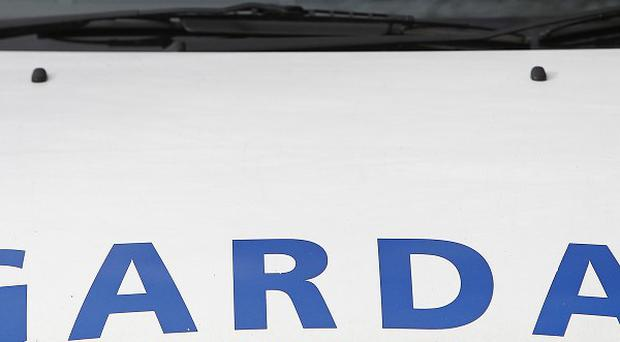 The Garda said two children fled from the house and suffered only minor injuries but a woman was found dead in an upstairs room