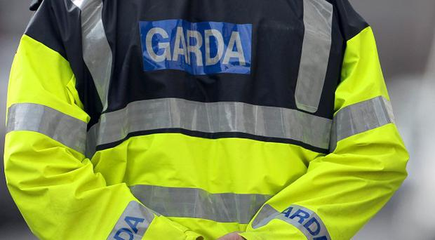 Gardai detained two men during a drugs raid on a house at Johnstownbridge in Co Kildare