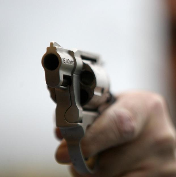 The survey found that one in 10 gun owners in Ireland keeps the firearm for personal protection