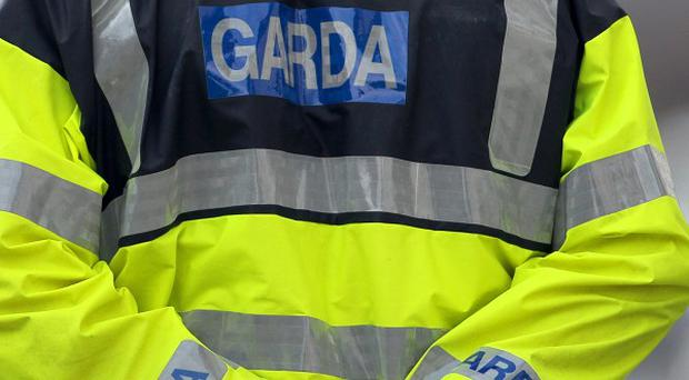 A man was stabbed to death while babysitting his grandchildren in north Dublin