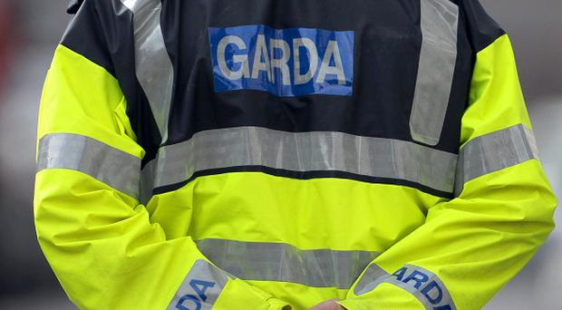 A man who fired shots at gardai in Co Dublin has been taken to hospital