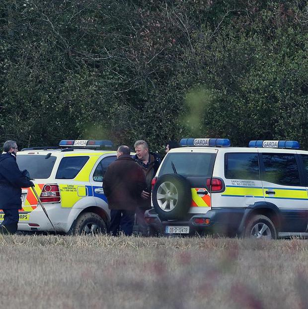 Gardai searched woodland at the Mayne in Clonee, where the skull was found