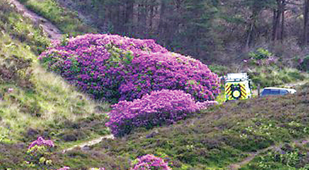 Rescue vehicles at Bay Lough in the Knockmealdown Mountains in Waterford