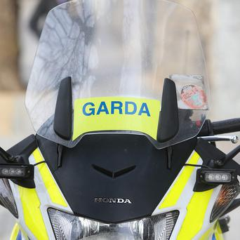 Garda in County Sligo are investigating after two males, believed to be brothers, were found dead