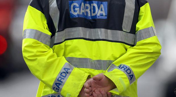 Garda officers have appealed for those with information about the murder to do