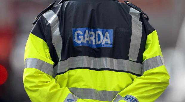 Gardai raided 30 homes and businesses