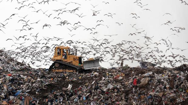 A disused landfill site in Bray is being washed into the sea, a new report has found