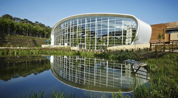 Part of the Center Parcs holiday village in Woburn Forest, Bedfordshire