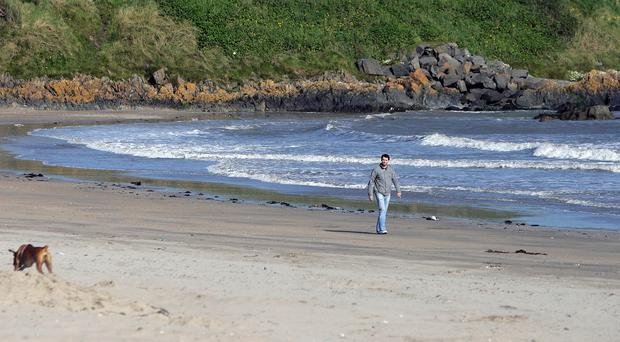 Bathers risk picking up a bug on some of Ireland's beaches, the EPA report said