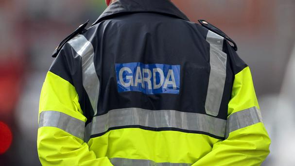 Gardai carried out in counties Dublin, Louth and Wexford