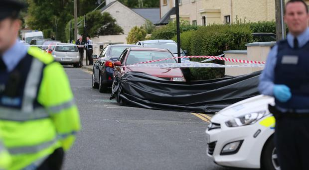 A 70-year-old woman died in a house fire in south Dublin