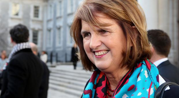 Joan Burton says the reform is about embracing minorities