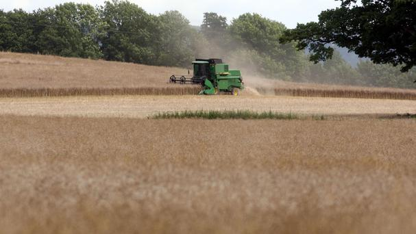 Farms are dangerous places for children, the Health and Safety Authority has warned