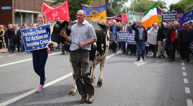 Caoimhe and John Murphy and their cow lead hundreds of farmers taking part in a protest over falling incomes outside the European Commission's office in central Dublin