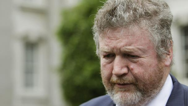 James Reilly was not in his car when it was targeted by as many as 34 demonstrators in Dublin