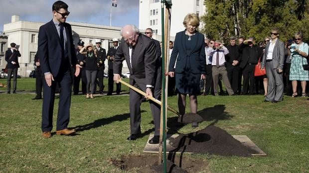Michael D Higgins participates in a tree-planting ceremony in Berkeley, California (AP)