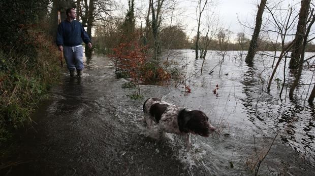 Brian Gray and dog Max go for a walk in a flooded park in Castleconnell in County Limerick
