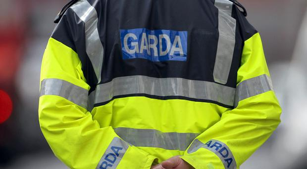 Gardai are investigating the fatal accident