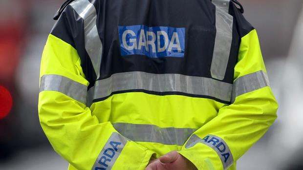 Garda forensic experts were conducting searches