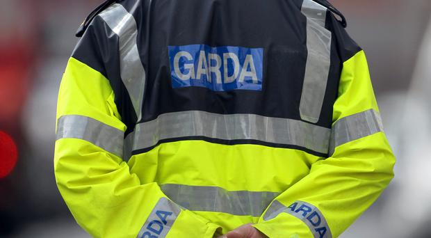Gardai sealed off the area this morning and carried out a search for a possible weapon.