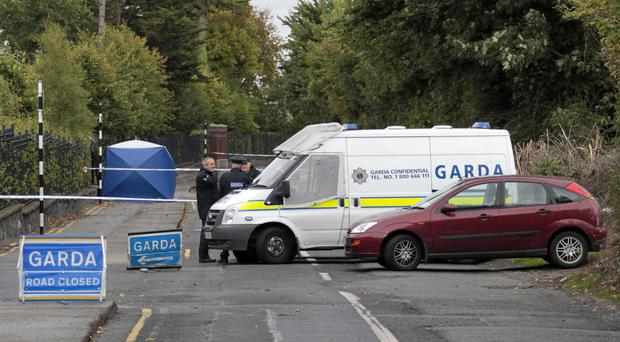 Gardai have launched a series of dawn raids in Dublin linked to gangland killings