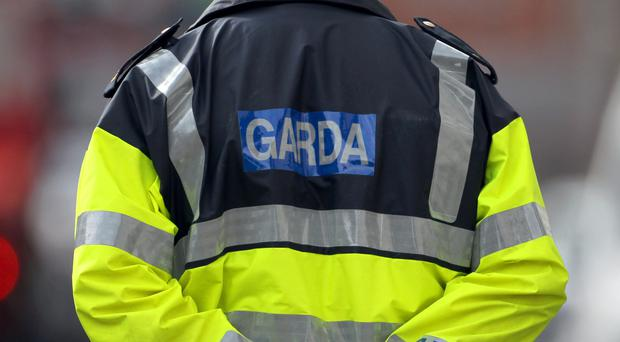 Police in the Republic are investigating where the remains of a newborn child found at a waste plant came from
