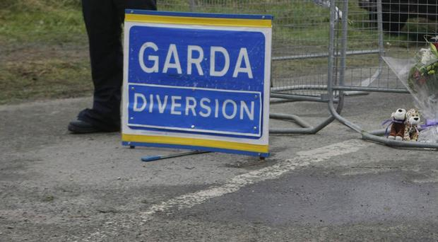 A man in his early 70s has died following a road crash in Co Tipperary