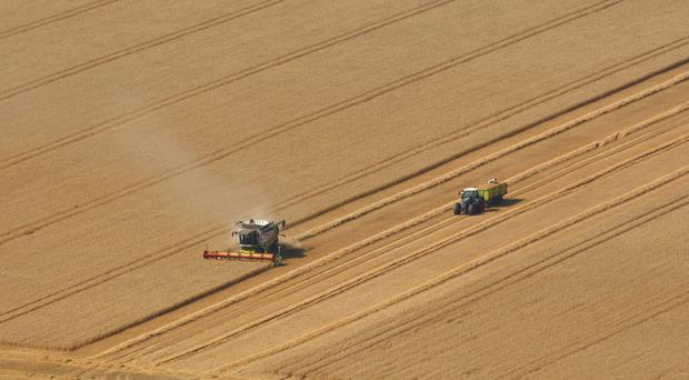 Farmers are among the hardest workers, according to the data