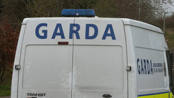 Gardai have appealed to witnesses or anyone with information about the car to come forward