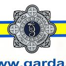 Gardai said Ricky Devine-McGinley died after a freak accident