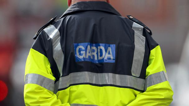 Gardai approached the group and were verbally abused