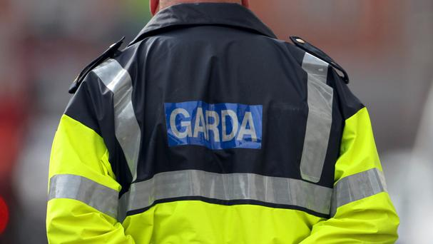 Gardai are appealing for witnesses to the incident in the Neilstown area of west Dublin