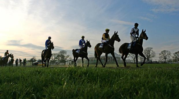 Stock picture of racehorses at Punchestown
