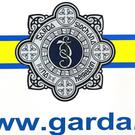 Gardai believed they foiled a murder
