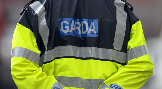 'Gardai were called to the scene where they spoke to the bus driver'