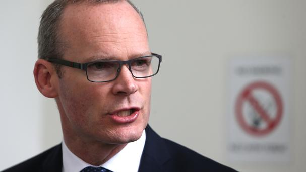 Simon Coveney warned over trying to force the leader out.
