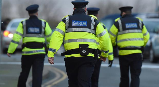 Gardai upgraded the probe over the death of retired farmer Paddy Lyons to a full-scale murder inquiry