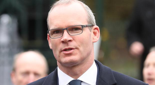 Fine Gael's Simon Coveney championed 'major change' in organising national security services
