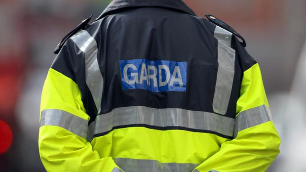 Gardai are investigating and have appealed for witnesses