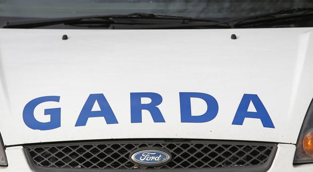 An area of woodland in south Dublin has been sealed off