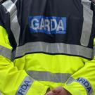 The Garda has launched an investigation after a gay couple claimed their pet chihuahua was beheaded