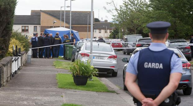 Sister of murdered criminal killed in gangland shooting