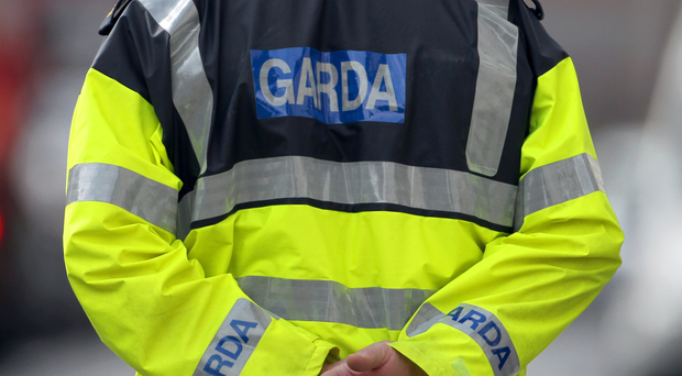'Gardai detained a man on Monday, but last night he was released without charge'