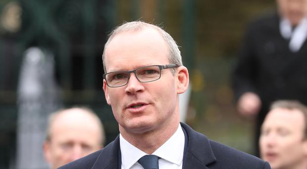 Mr Coveney will meet representatives of Irish companies doing business in Africa